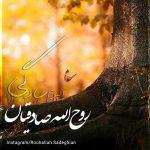 آلبوم روح الله صادقیان – سادگی